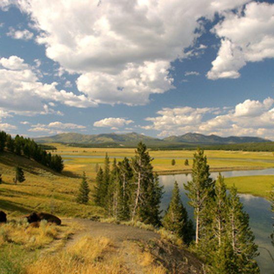 Luxury accommodations can be found near Yellowstone National Park.