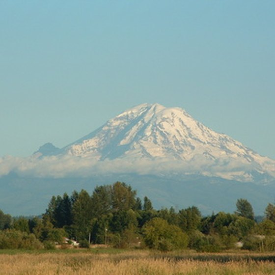 Tacoma cruises offer striking views of Mount Ranier.