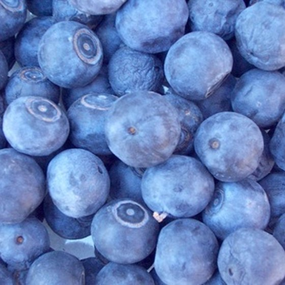 Farm stands sell organic blueberries and alpaca wool.