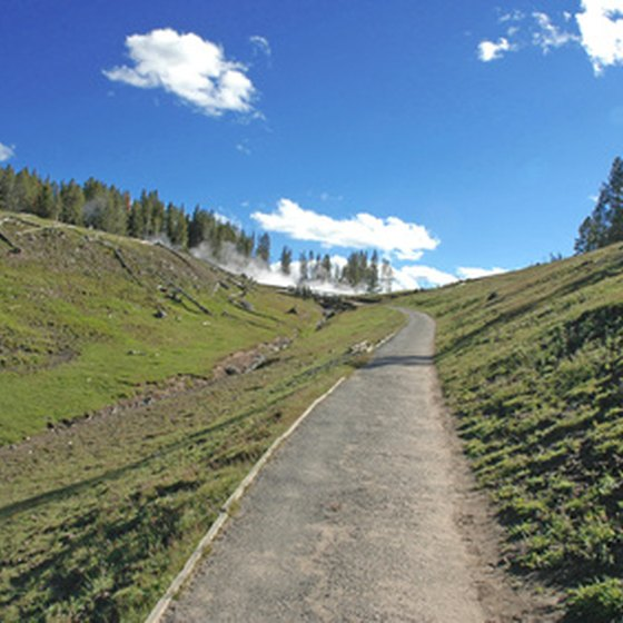 A smaller road in Yellowstone National Park