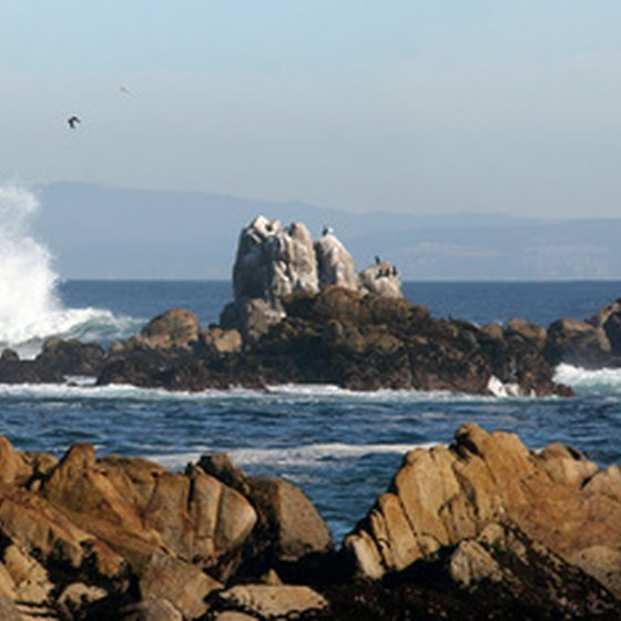 Rocky beaches are typical of the Oregon Pacific coastline.