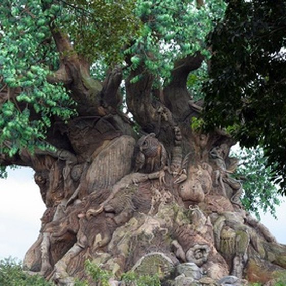 The Tree of Life is the center attraction of Walt Disney World's Animal Kingdom.