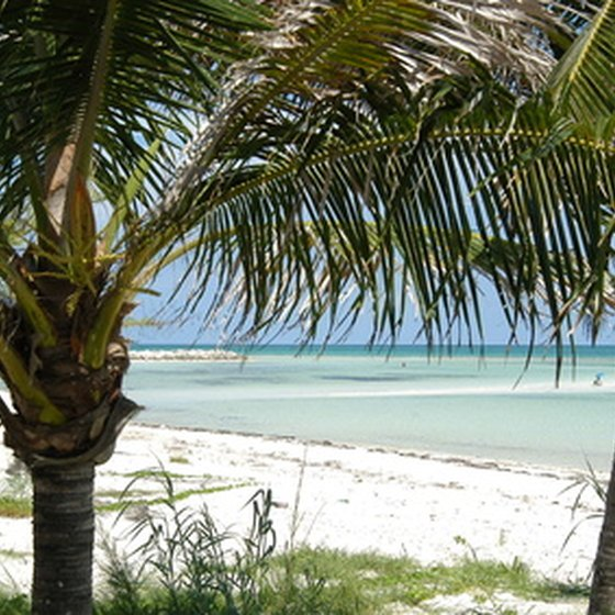 Andros is a relatively unspoiled Bahamiam island.