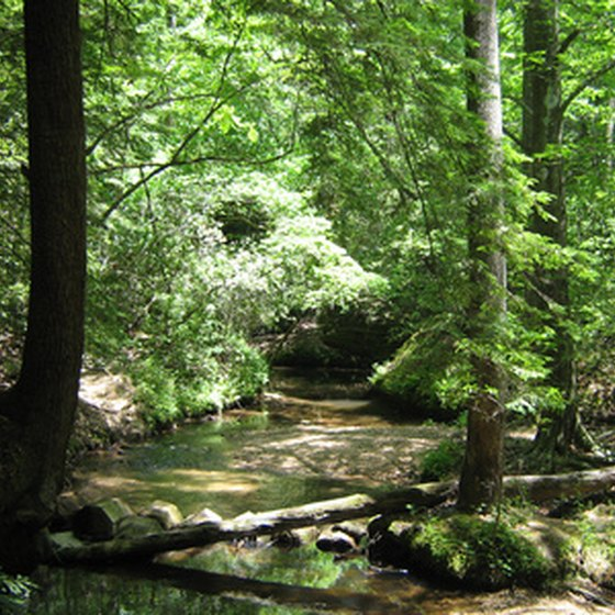 Nature is preserved in Alabama state parks to be explored.