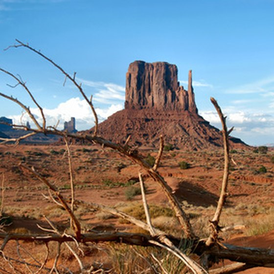Outdoor enthusiasts flock to Mesa, Arizona for the wealth of things to do.