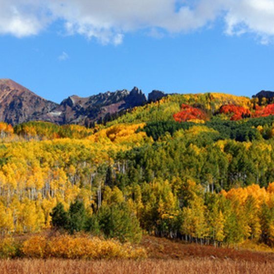 Secluded honeymoon cabins in Colorado have spectacular scenic views.