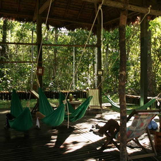 Jungle lodge in the Amazon