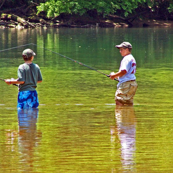 Fishing is a common activity for visitors to Lake Dardanelle.