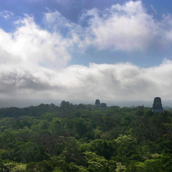 The pyramids of Tikal towering above the jungle
