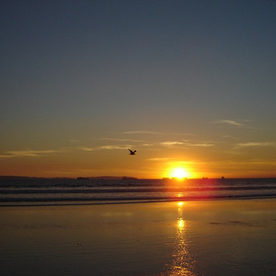 Enjoy the sunset from the coast of California.