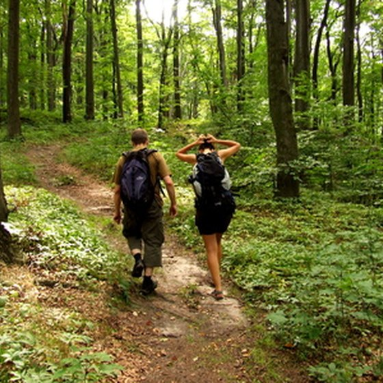 Enjoy hiking in the Great Smoky Mountains National Park.