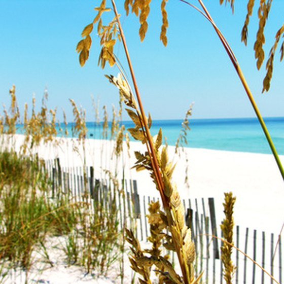 RV campers in Silverhill, Alabama, are a short drive from Gulf Shores beaches.