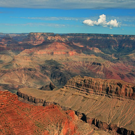 A large number of tour guides service the Grand Canyon.