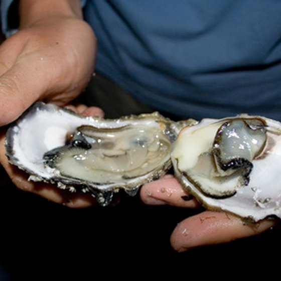 Some oyster bars in Oregon offer raw oysters.