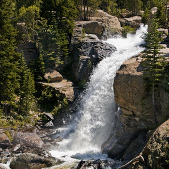 Alberta Falls draws numerous hikers visiting Rocky Mountain National Park.