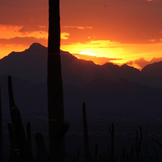 Enjoy colorful desert sunsets in Phoenix, Arizona
