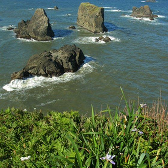 Breathtaking views of the Pacific is one of the attractions of RV parks in Garibaldi, Oregon.