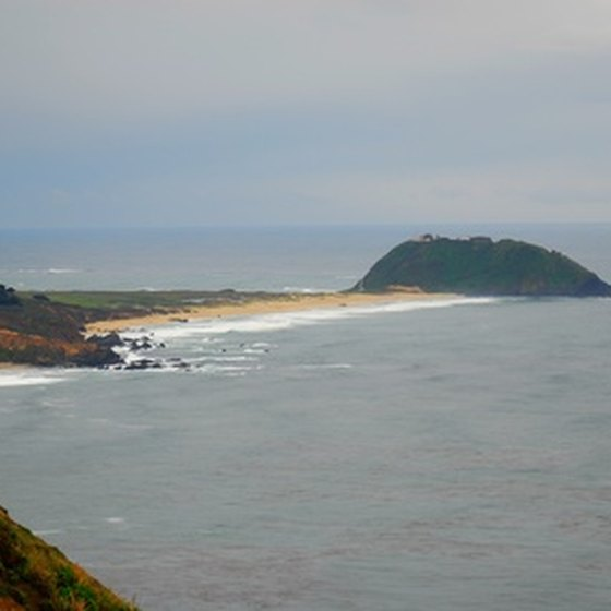 Point Reyes State Park sits on the Pacific coast.