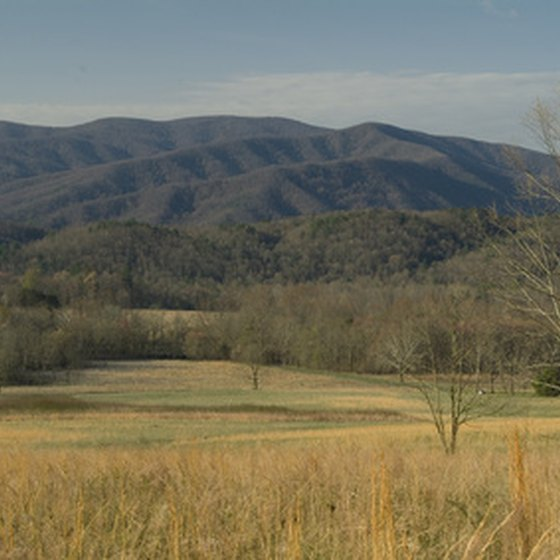 Train tours provide scenic vistas of the Smoky Mountains.