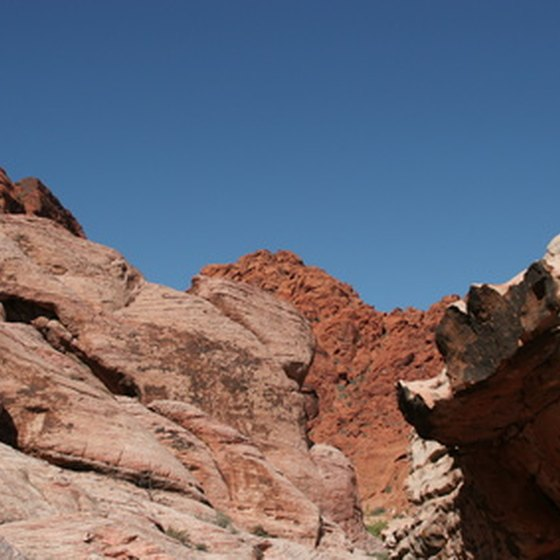Vegas offers more than casinos; visit the Red Rock Canyon for some variety.