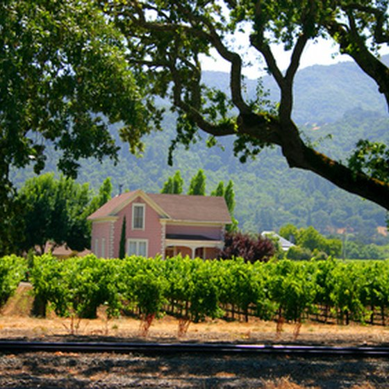 Train tours in Napa Valley pass by numerous vineyards and wineries.