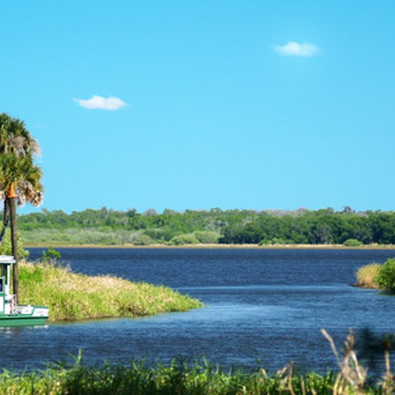 Myakka State Park is close to Encore RV parks on the Gulf Coast.