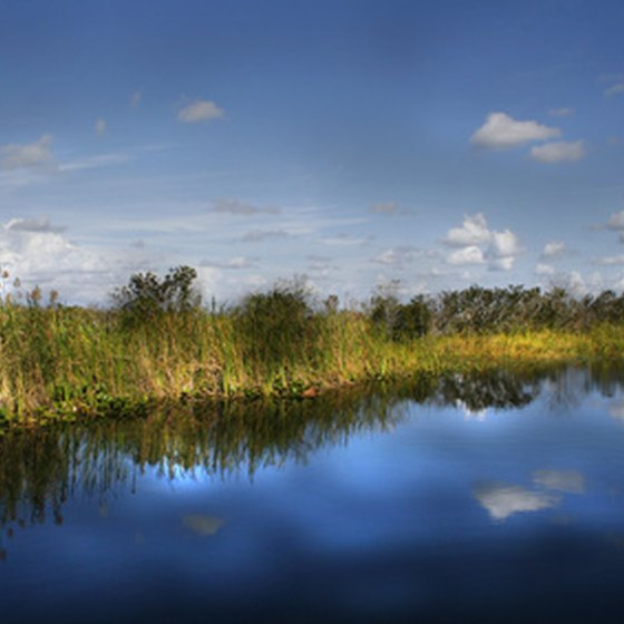 Florida adventure vacations include kayak trips in the Everglades.