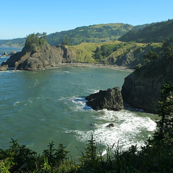 Many state parks along the Oregon coast feature hiking trails with beach views.