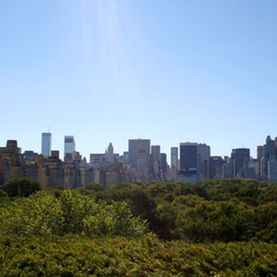 Manhattan seen from Central Park.