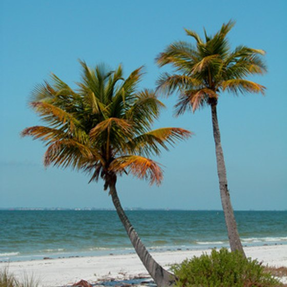The Gulf of Mexico is one of the big draws for campers on the Florida Panhandle.