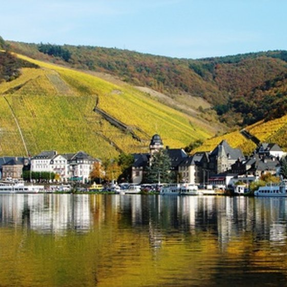 A small village and vineyard in Germany