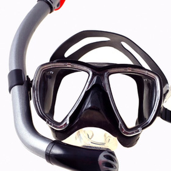 Professional-grade snorkeling gear ensures a comfortable fit and enhanced safety features.