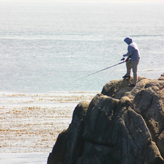 Monterey features a rocky coastline that is popular for fishing.