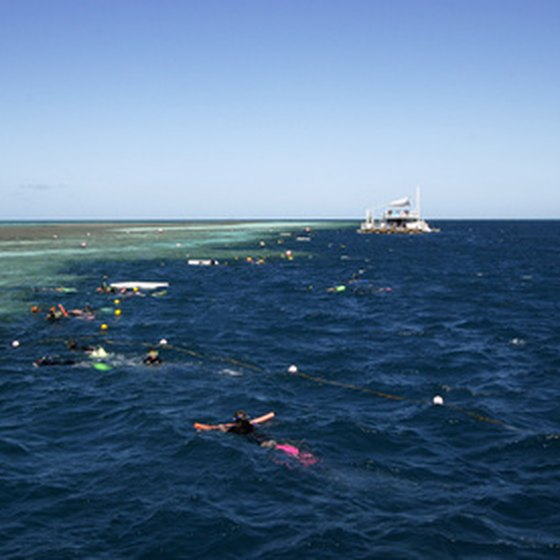 Snorkelers enjoying the water by their boat