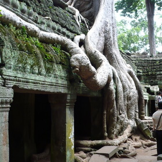 One of the ancient buildings of Angkor with overgrown vegetation.