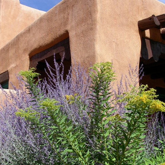 Distinctive desert architecture of Taos, New Mexico