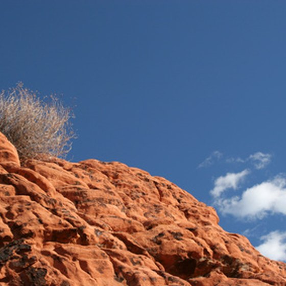 Experience nature near Las Vegas at Red Rock Canyon.