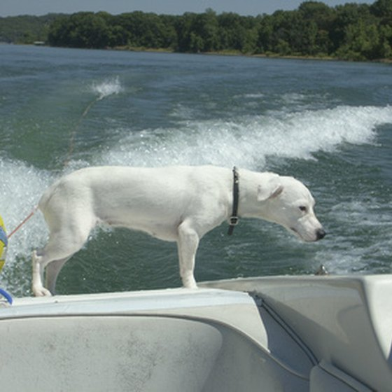 Many North Texas lake vacations include boating activities.