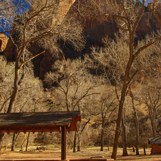 Zion National Park in southeastern Utah offers areas for wedding ceremonies.