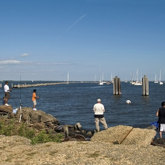Many people fish from the shores, boats or docks.