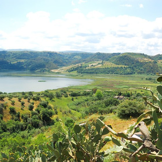Many tours take you through the countryside of Calabria.