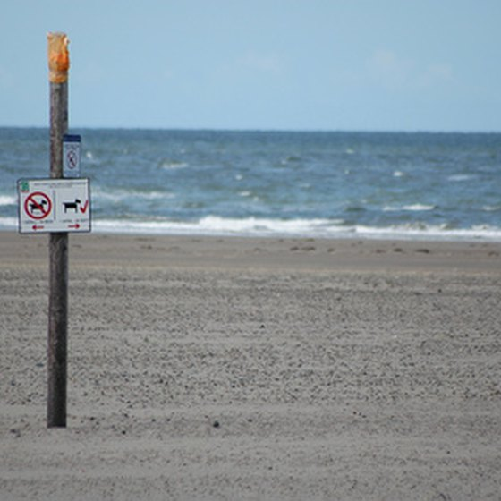 Pay attention to signs on the beach in Ixtapa.
