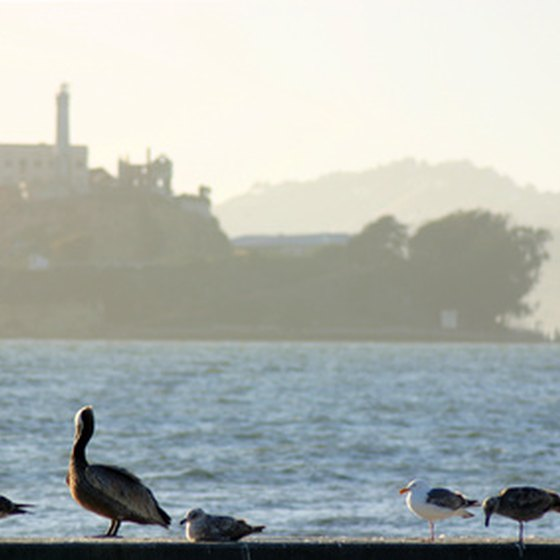 good thesis statements for alcatraz