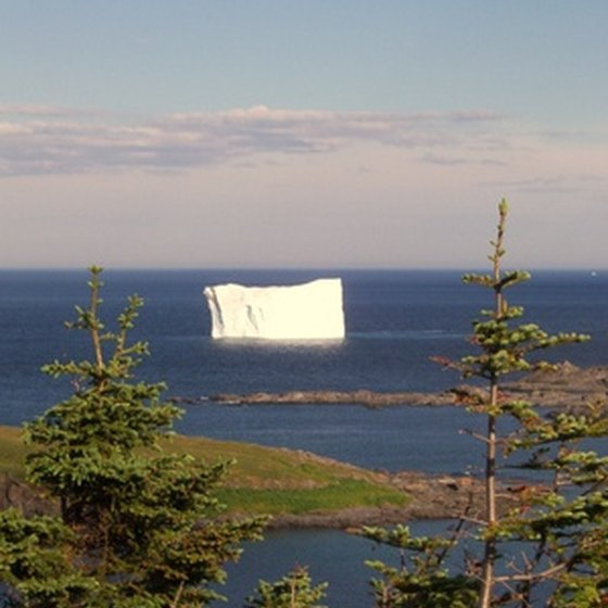 Icebergs are just one of the sights visitors staying near Terra Nova National Park can witness.
