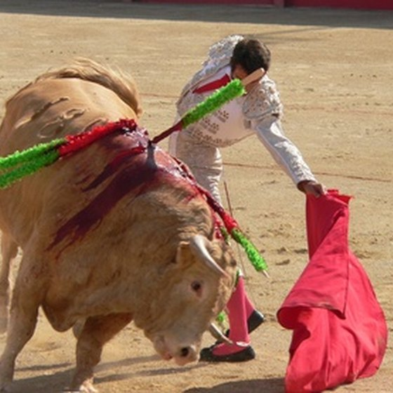 Bullfighting is still a popular sport in Spain.