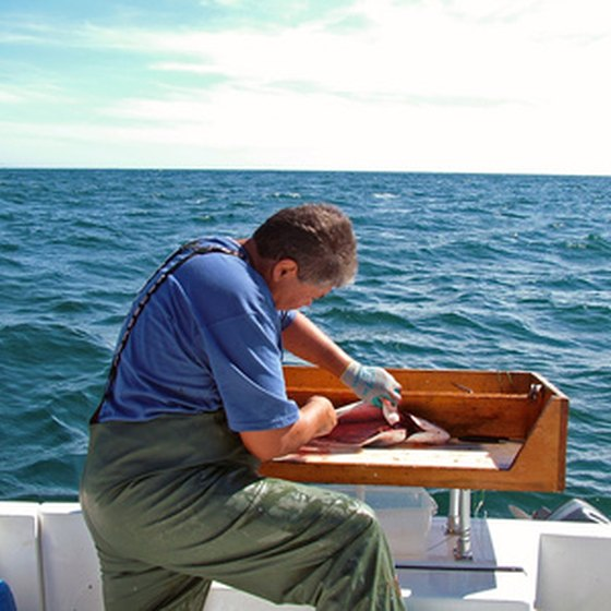 Charter a boat to catch some of Alaska's most famous fish.