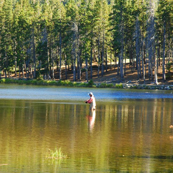 Fly fishing anglers flock to the Roaring Fork to catch trout.