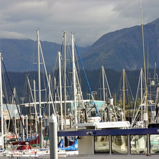 Enjoy the sites and sounds of the Small Boat Harbor in Seward.