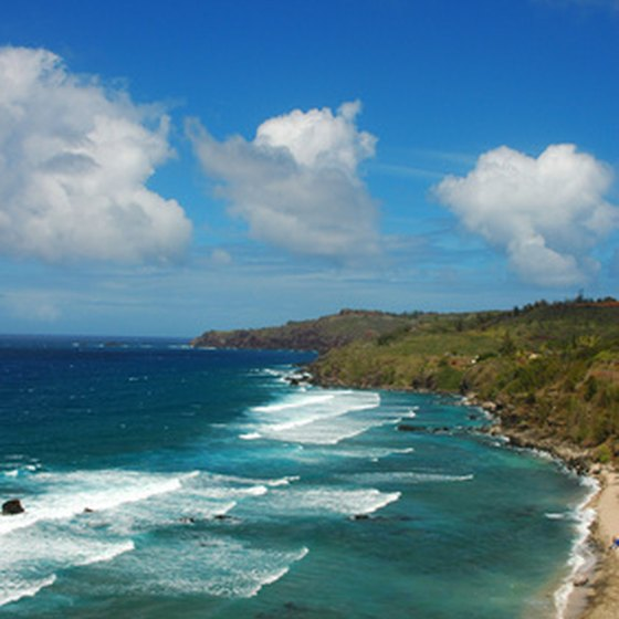The island of Maui offers beautiful beaches and healthy restaurants.