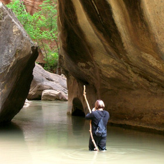 The Virgin River is just one of many natural beauties to be explored out West.